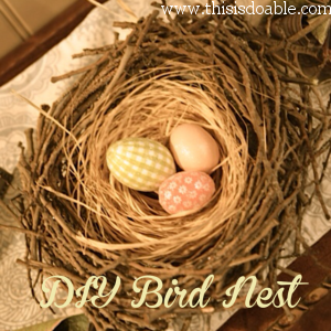 DIY tutorial on making this Easter/Spring bird nest.  Adorable!