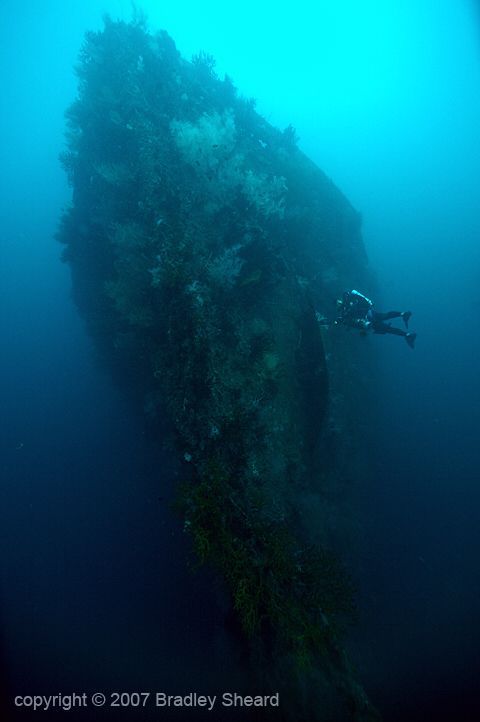 The Bow Of The Transport Azumasan Maru Towers Over The Bottom Of Iron Bottom Sound Just Off The Beach Of Guadalcanal Uss Chicago World War Two World War I