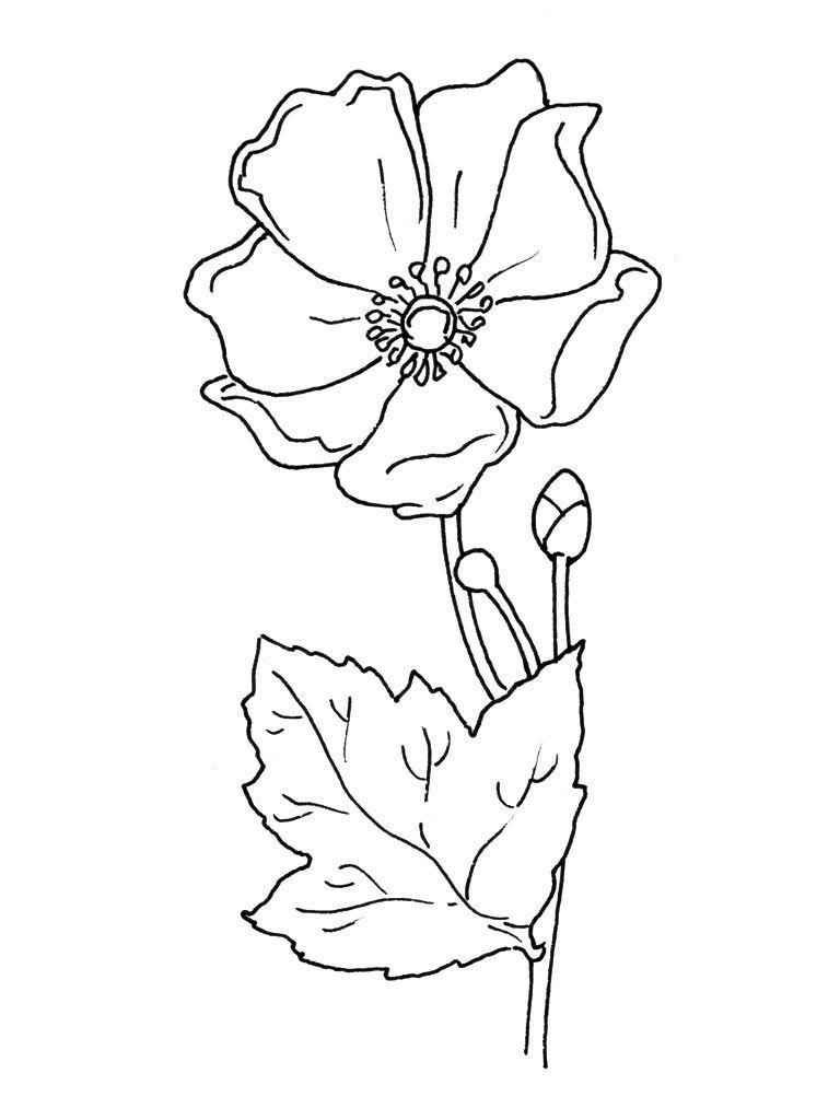 Bouquet De Fleurs Dessin Recherche Google Coloring Pages