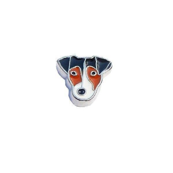 Mini Charm Jack Russel, da Linha Treasure.  #pets #dogs #cães #cupidolovestore #linhatreasure #capsulas e #charms compatíveis com #lifesecrets da #vivara