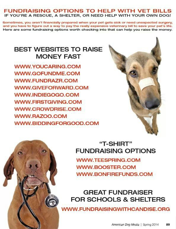 Pin By Emily Coker On Fundraisers Animal Rescue Ideas Animal Shelter Fundraiser Dog Rescue Fundraising