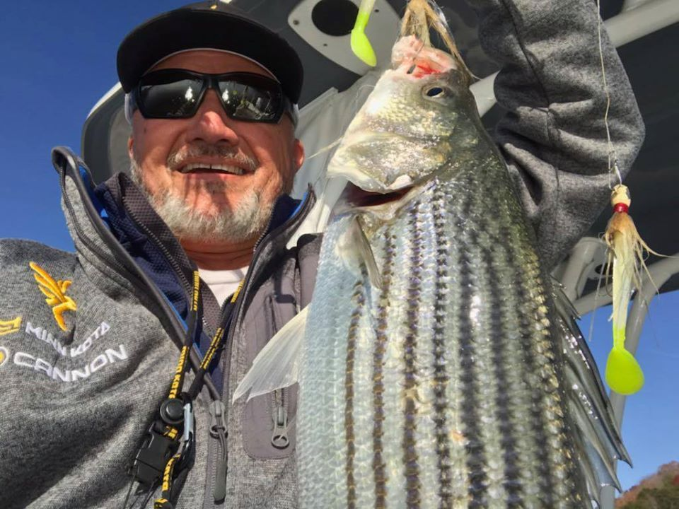 how to catch striped bass in rivers