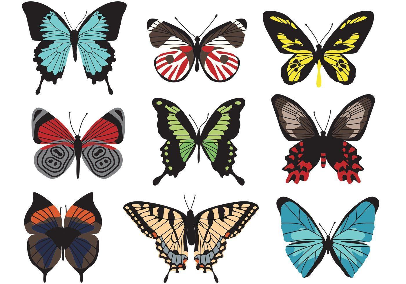 Butterfly Vectors Vector Art Butterflies Vector Butterfly Drawing Images