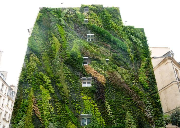 Vertikal Garten das ganzer wohnblock ist ein vertikal garten in nuancen grün
