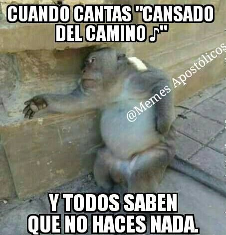 Pin By Felix Santos On Memes Cristianos Funny Christian Quotes Funny Spanish Memes Good Morning Funny