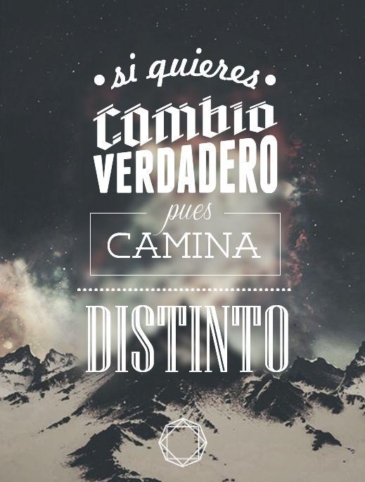 Calle 13 Frases De Canciones Calle 13 Y Frases Lpda