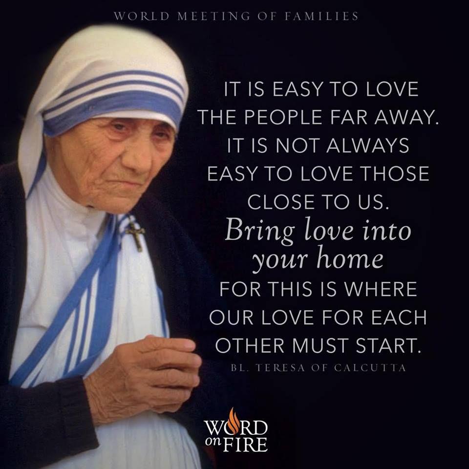 Mother Teresa   Mother teresa, Saint teresa of calcutta