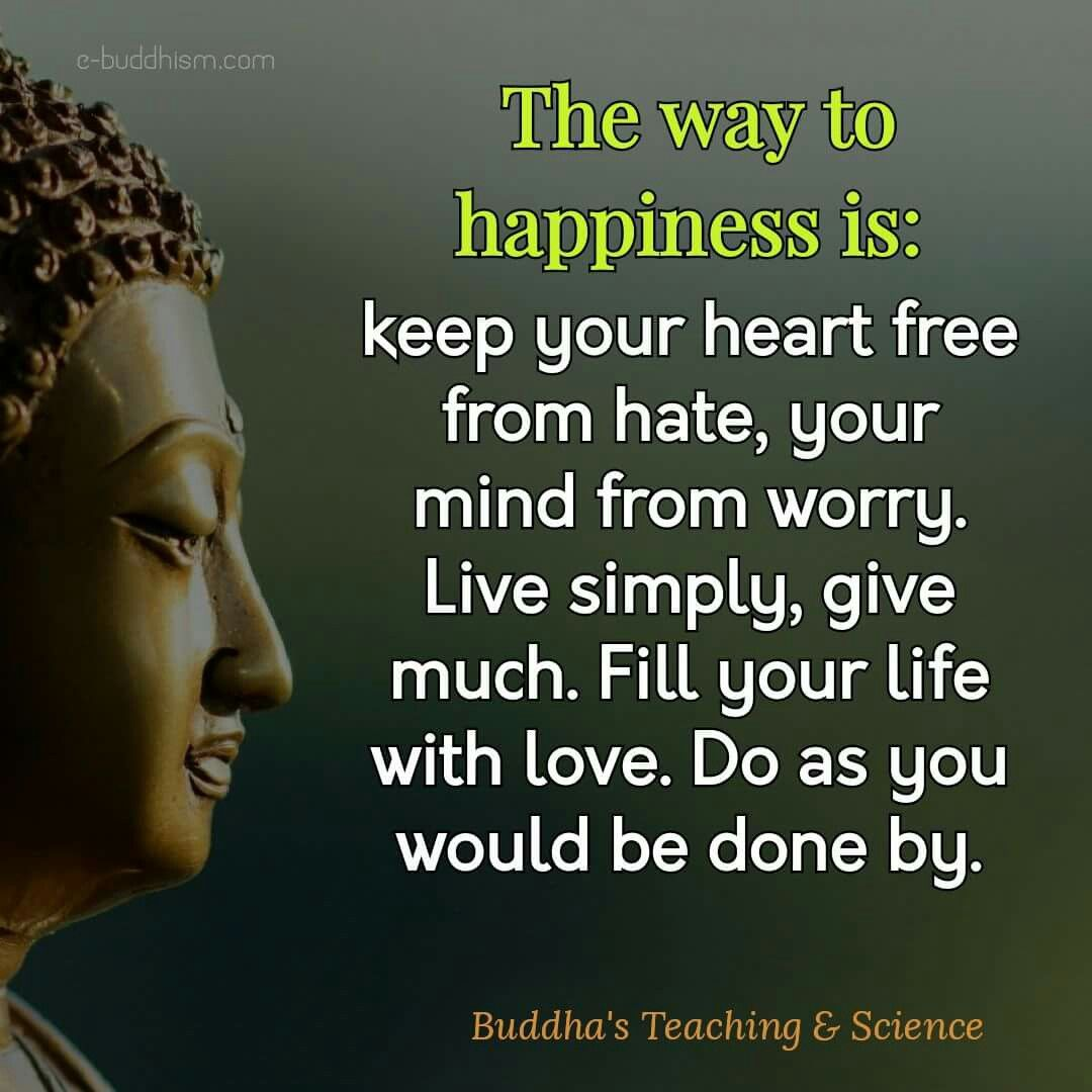 That is the truth  Chants  Pinterest  Quotes Buddha quote and