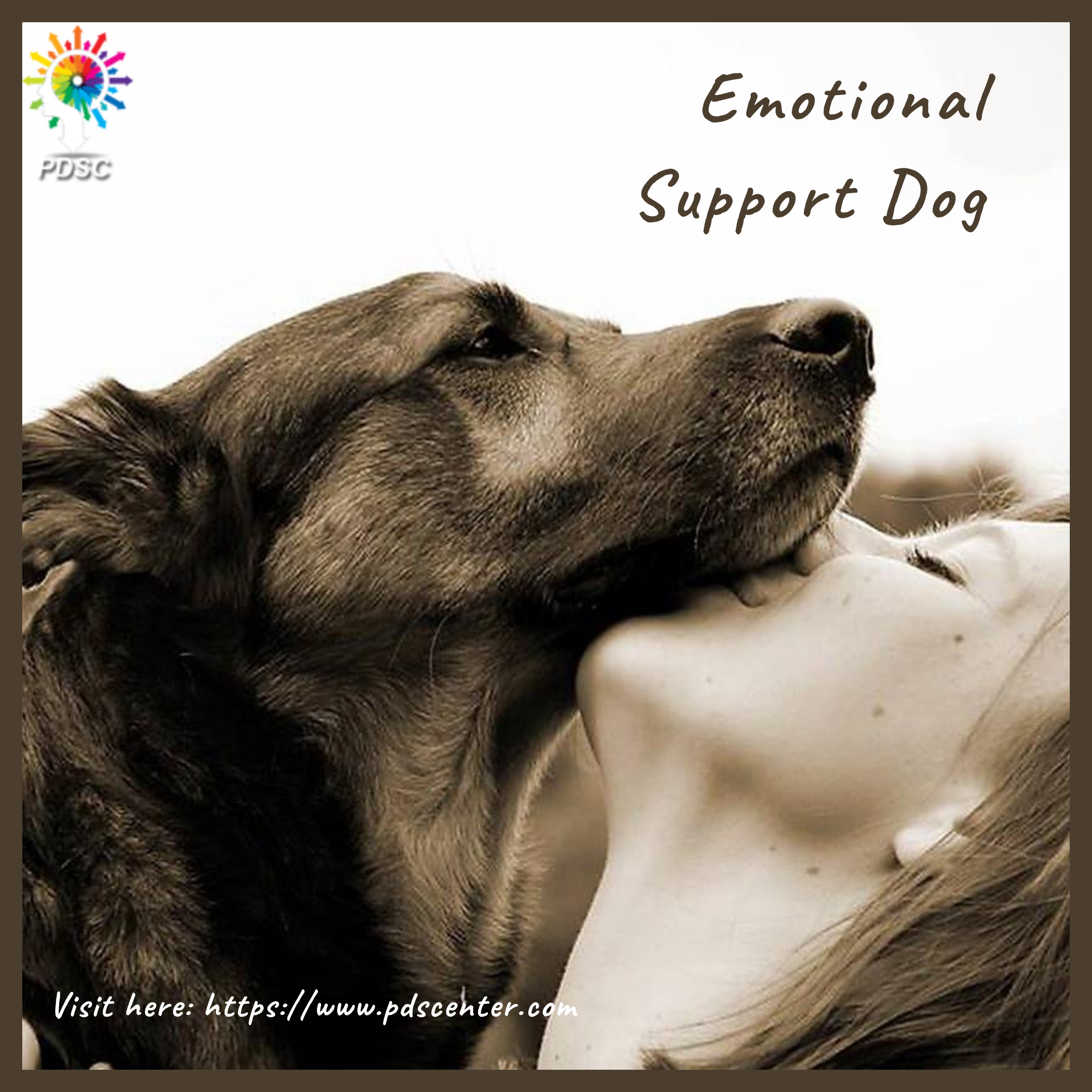 Emotional support animal doctor letter nel 2020