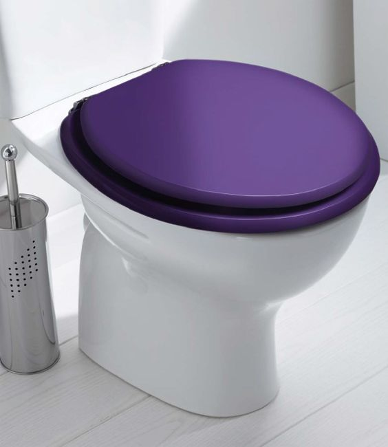 Coloured Toilet Seat Adaptive Help Aids Coloured