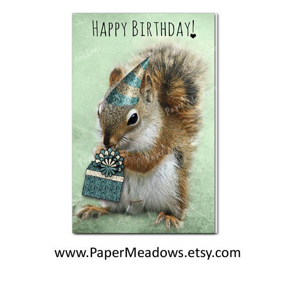 Photo Card Download Photographer Karen Titled Happy Birthday Created With One Of My Most Popular Sweet Squirr Animal Cards Squirrel Happy Birthday Cards