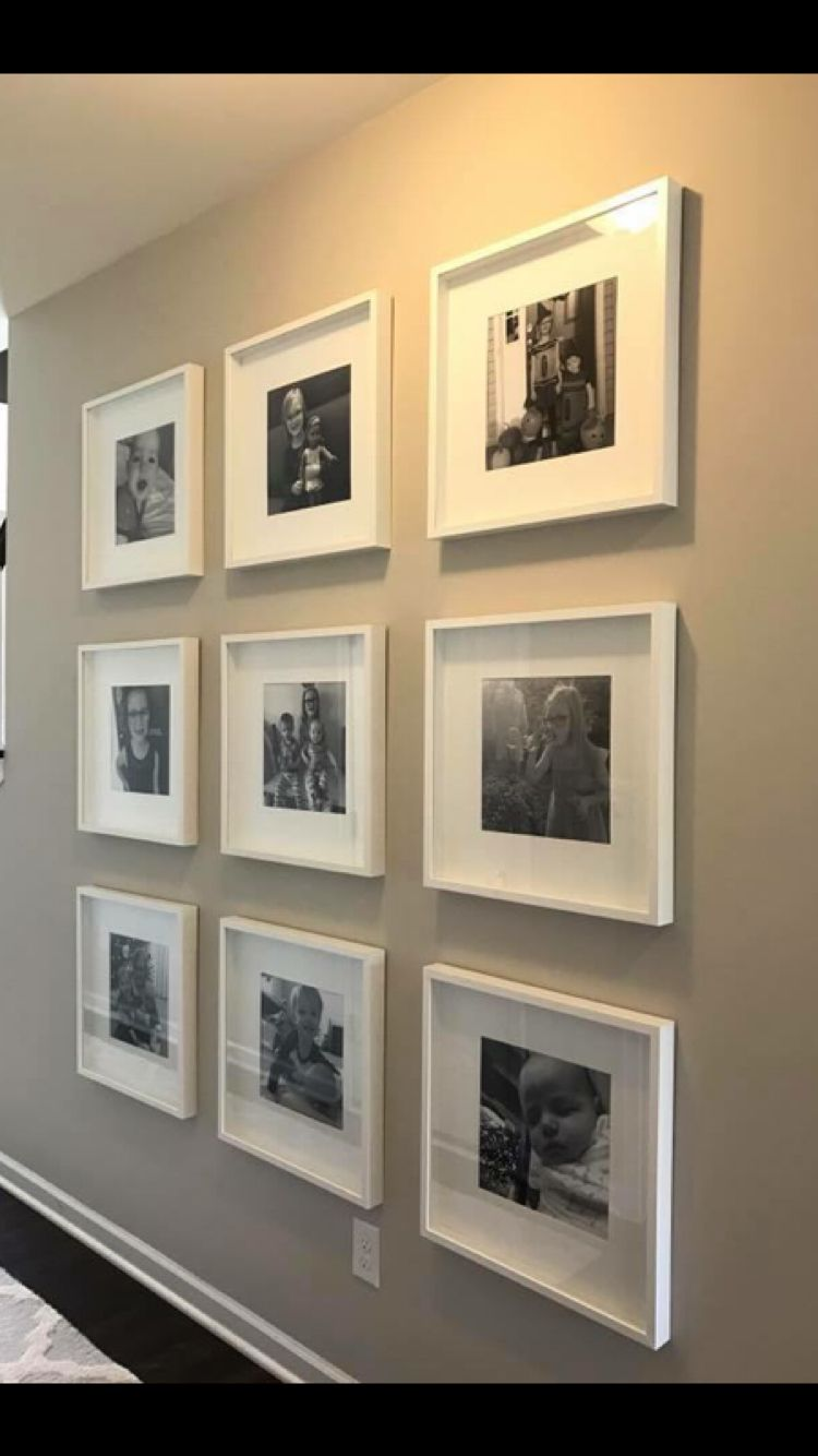 """Ribba ikea frames 19 3/4 inch. 12"""" square pictures   Decor ..."""