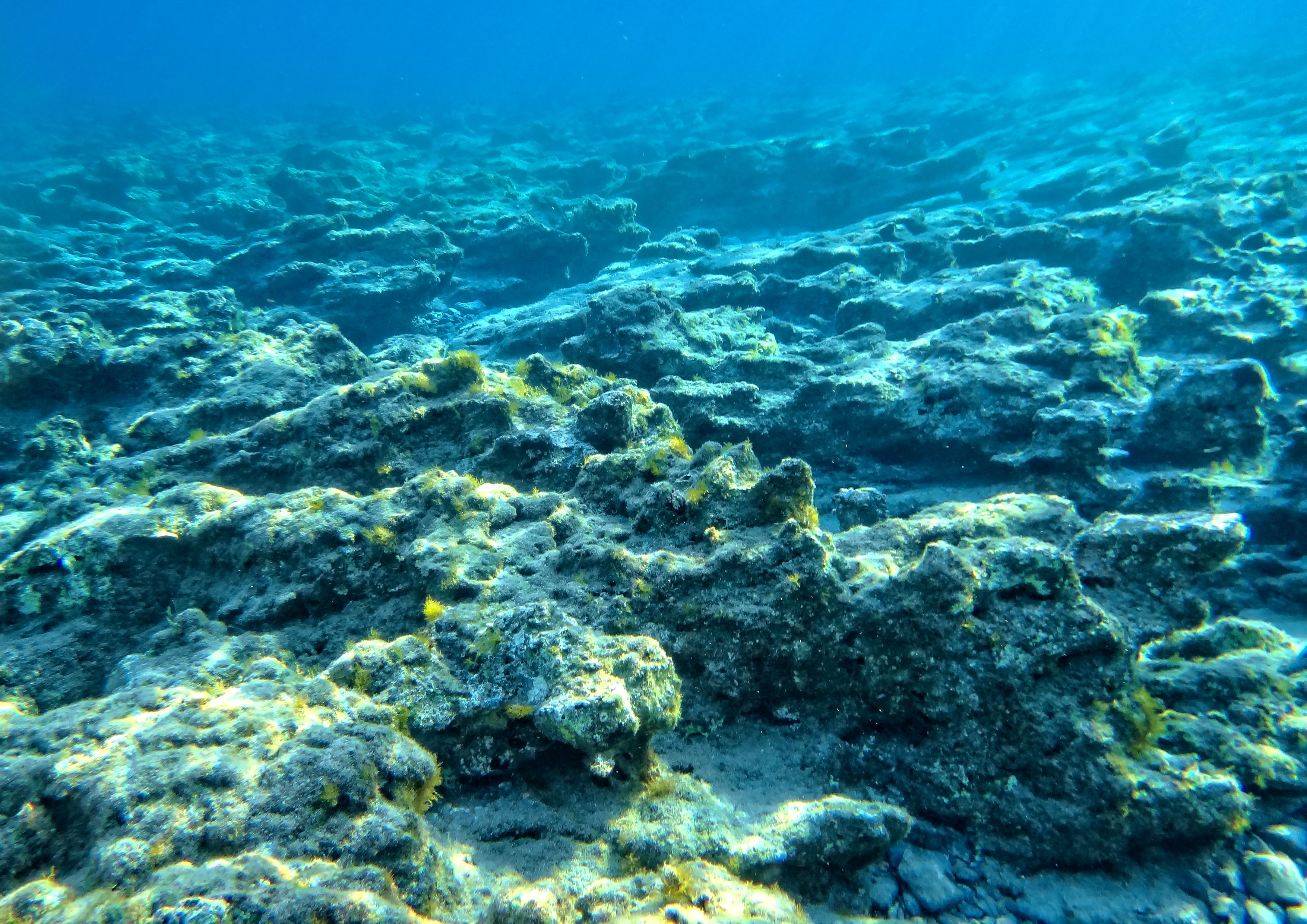 Underwater Print Diver Gift Deepwater Sea Underwater Landscape Printable Art Blue Wall Art Underwater Photography Turquoise Water Art Underwater Photography Blue Wall Art Ocean Pictures