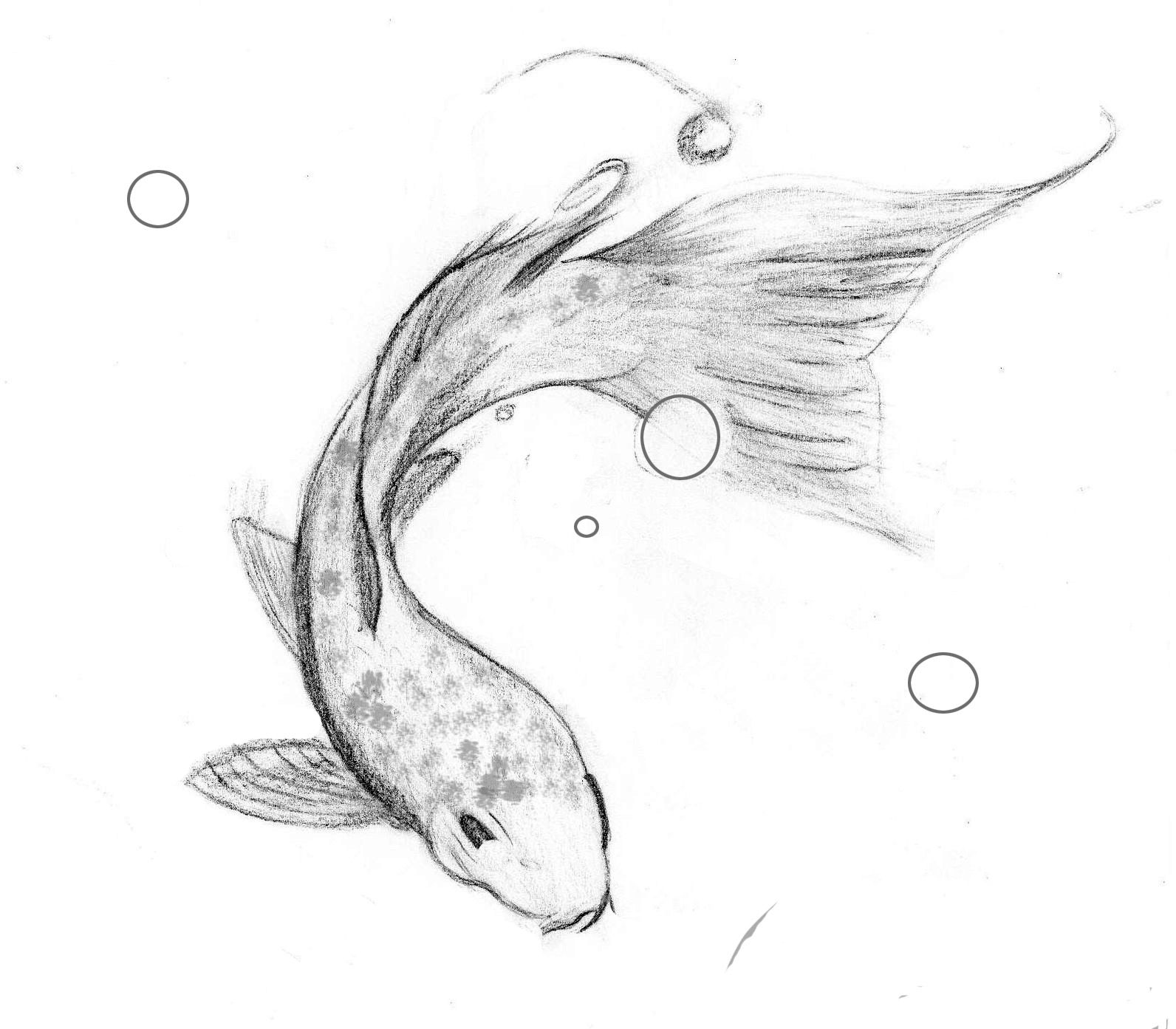 Image result for koi fish drawings in pencil