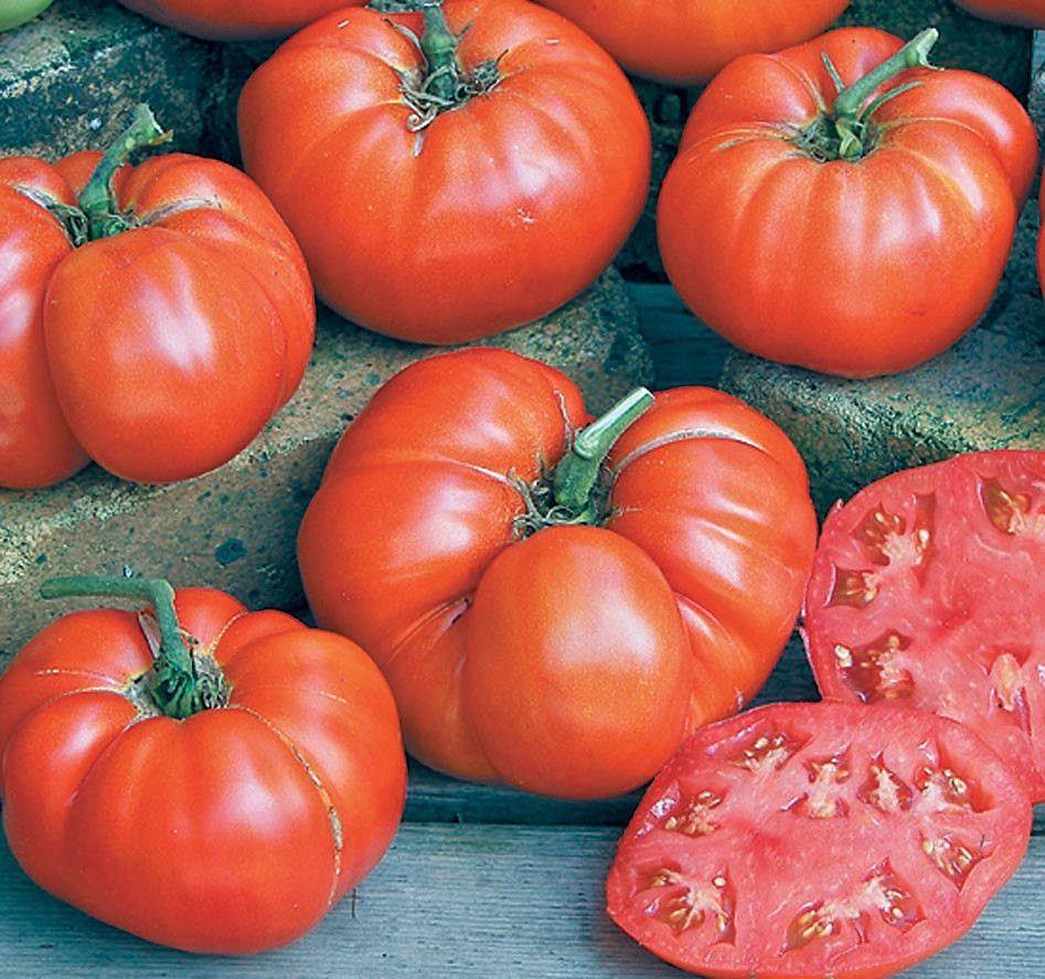 Tomato Seeds Ponderosa Red Og Aka Ponderosa Scarlet 400 x 300