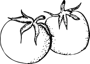 Tomato 20clipart Cartoon Clip Art Black And White Drawing Clipart Black And White