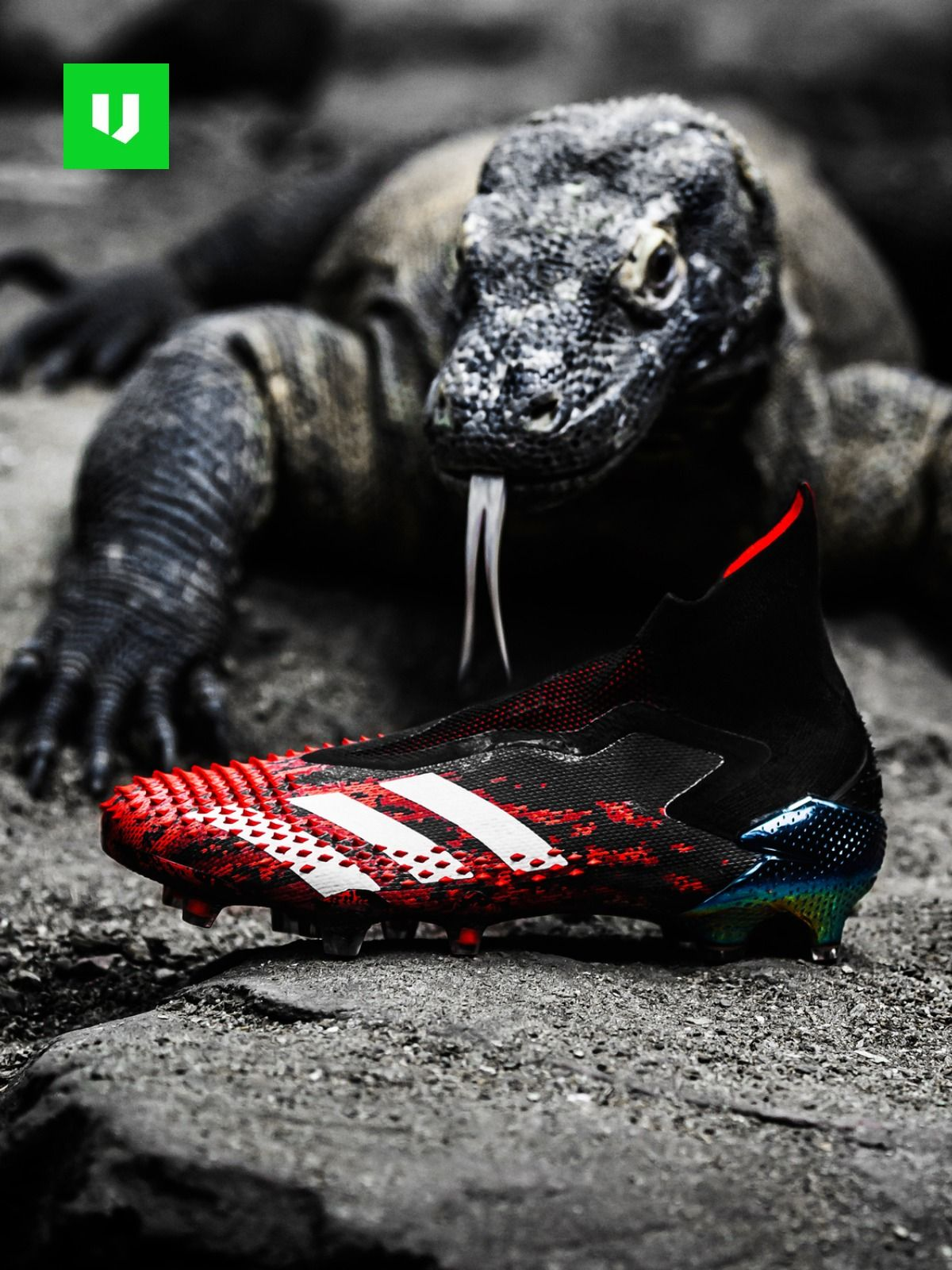 Wauw The New Adidas Predator Is Here In 2020 Adidas Soccer Boots Nike Football Boots Soccer Boots