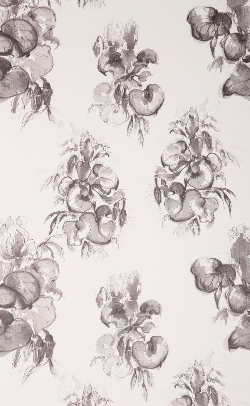 wallpaper cyclamen graphite