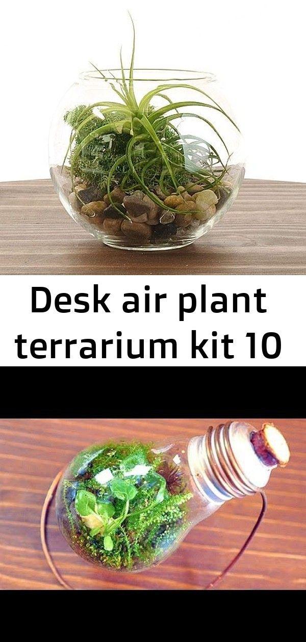 Desk air plant terrarium kit 10 Desk Air Plant Terrarium Kit 6 Lifehacks von UdSSR Kindern - YouTube Have a great day! ? Hey Leute!  Ich bin CAPCOBI, cool das Ihr da seid!   In diesem Video baue ich Step by Step ein ewiges Terrarium.   Viel Spaß dabei! :)