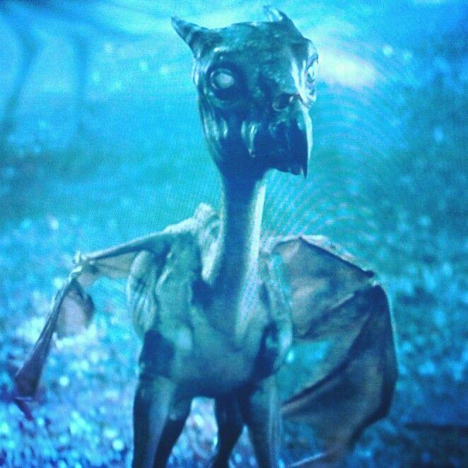 Favorite Magical Creature Thestrals Fantastische Tierwesen Tiere Bilder