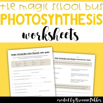 Magic School Bus Gets Planted Photosynthesis Worksheets With