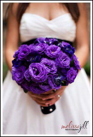 Flowers, Bouquet, Purple