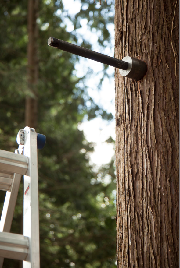 TAB (Treehouse Attachment Bolt) for DIY Treehouse building – Be in a Tree