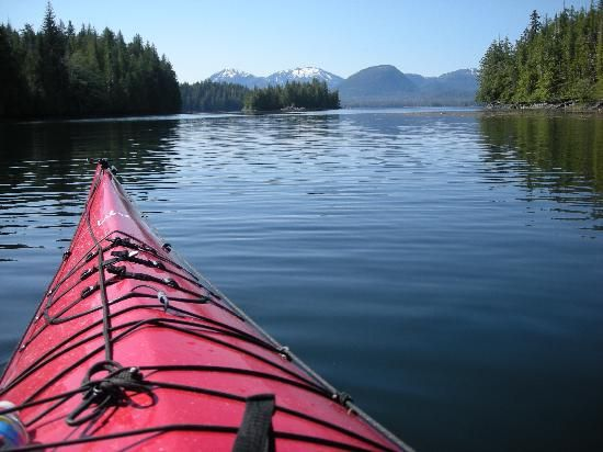 Kayaking in Ketchikan...a Perfect moment with bald eagles and jumping fish...a place my mind goes when it wanders...