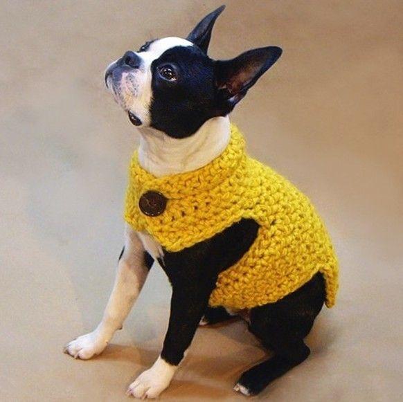 Source Fashion Design Button Neck Hand Crochet Dog Clothes Factory ...