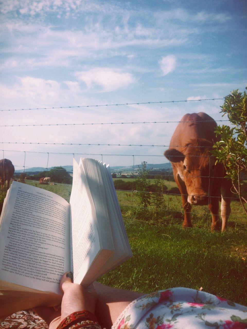 Vou ler pra você...