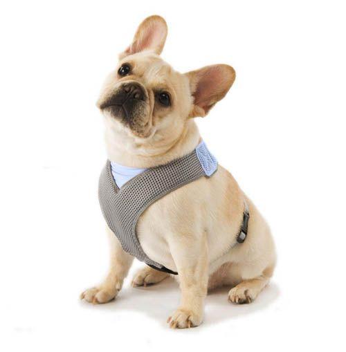 Comfort Dog Harness Cani