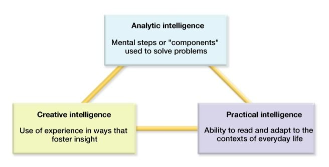 sternbergs triarchic theory of human intelligence According to robert sternberg's proposed theory of human intelligence, a  common set of universal mental processes underlies all aspects of intelligence.