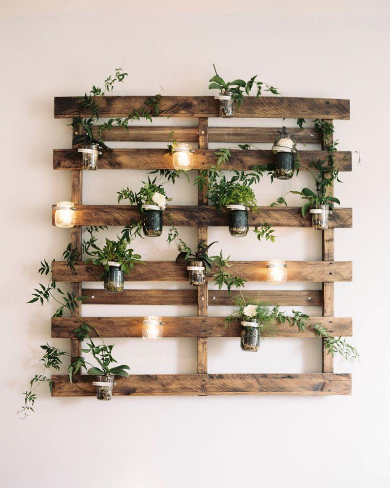 Photo of Les plantes: le plein de bienfaits dans votre déco!   Shake My Blog