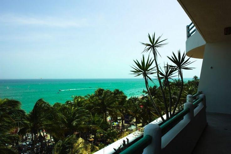 Yaque Paradise Playa El Yaque Hotel Paradise Plants