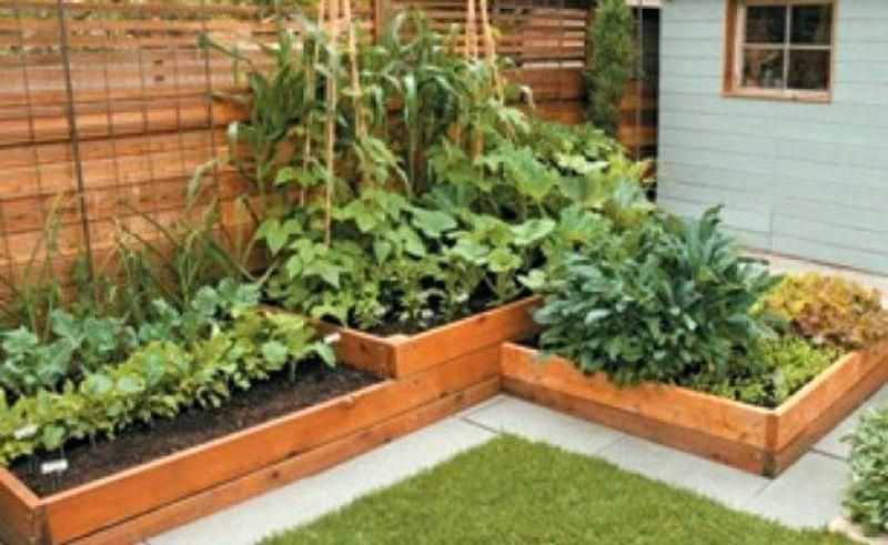 Image result for raised garden beds multi-tiered ...