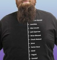 Beard Like T-Shirt | Famous Facial Hair Tee | Mens Beard Measuring Tshirt | Wish