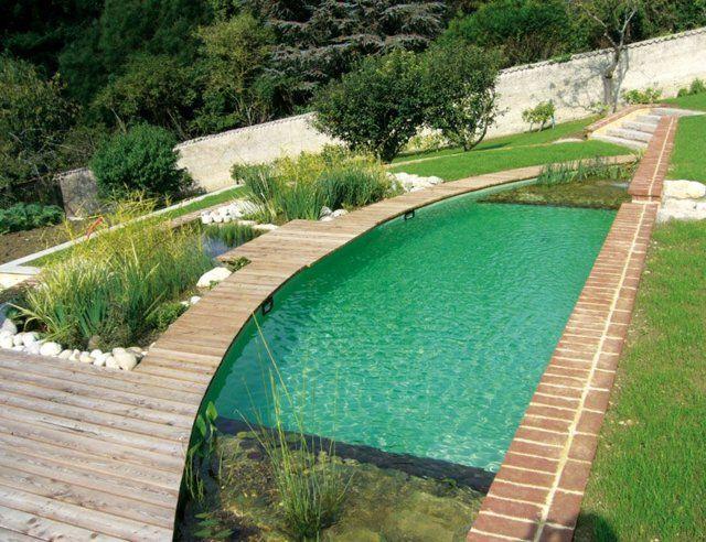 nachhaltig modern Pool Garten Wasserpflanzen Reinigung natürlich - garten anlegen mit pool