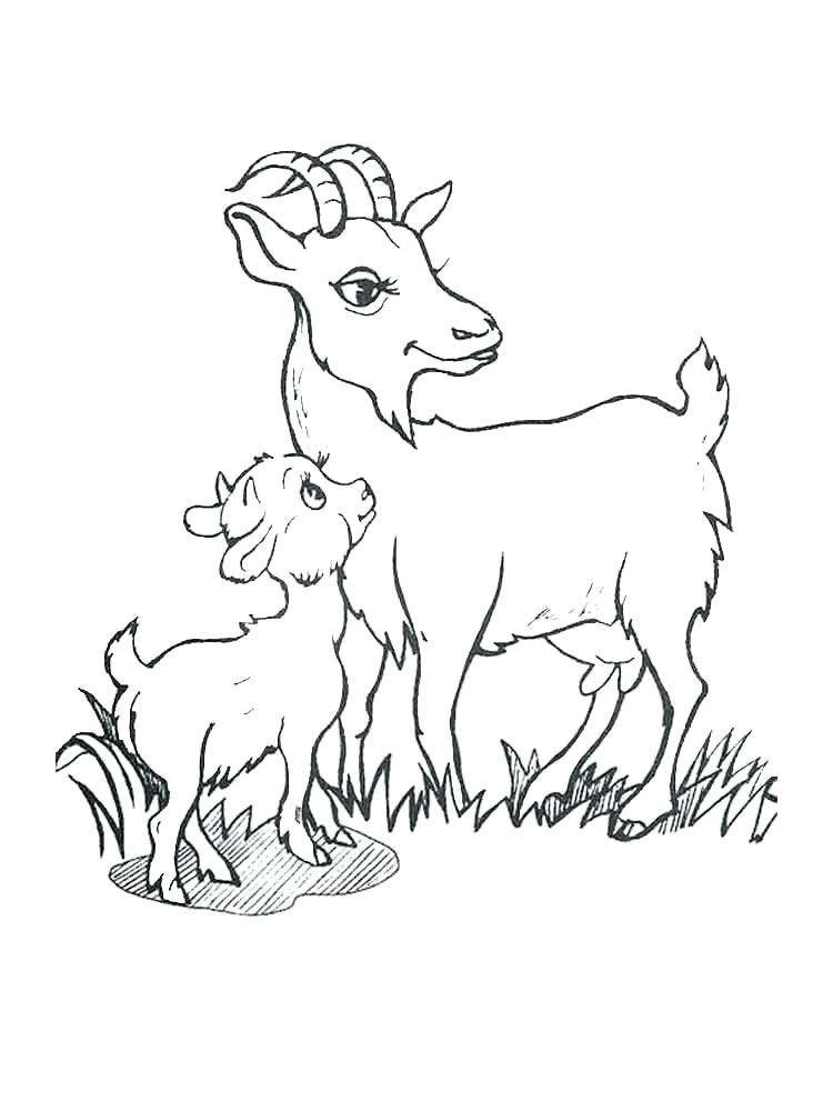 Cute Goat Coloring Pages Cute Goat Coloring Pages At Getdrawings En 2020