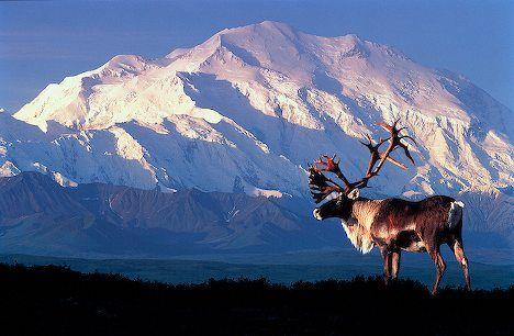 Alaska..I would love to visit Alaska!!