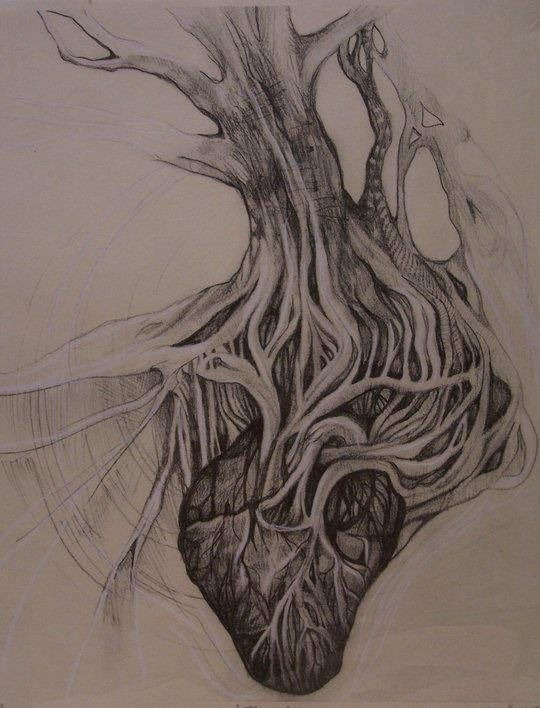 Roots Of A Tree Connecting To An Anatomical Heart Interesting Tattoo Idea Explore Tattoo Cool Tattoos Unique Tattoos For Women