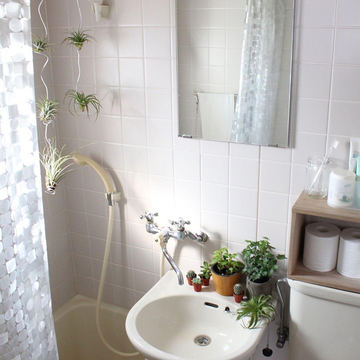 バス トイレ ユニットバス 一人暮らし 植物のインテリア実例 2017 03 05 09 27 40 Roomclip ルームクリップ ユニットバス インテリア ユニットバス ユニットバスルーム