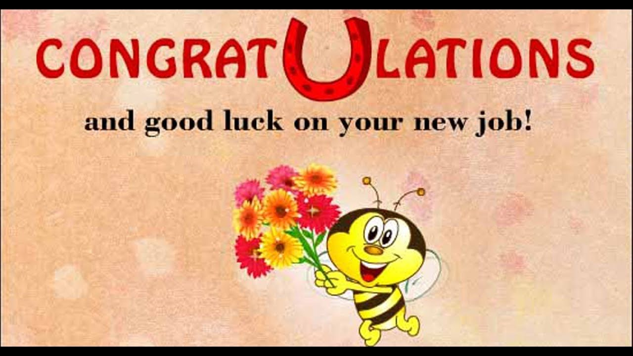 Best Wishes For New Job Message and Status