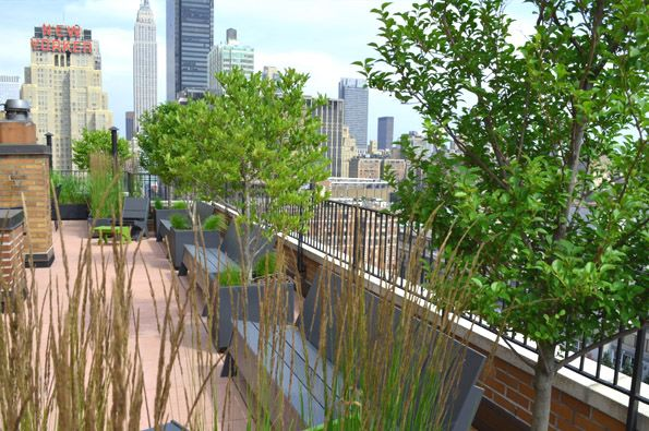 Garden Design Nyc Co op and condo roof garden new york city ny ny by jeffrey erb co op and condo roof garden new york city ny ny by jeffrey erb sisterspd