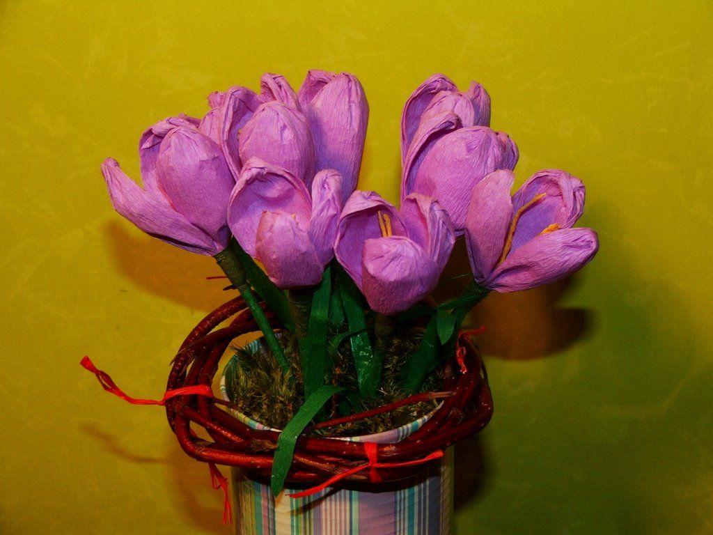 W Krainie Alicji Wiosenne Kwiaty Z Bibuly Cz Ii Tissue Paper Flowers Diy Flowers Paper Flowers
