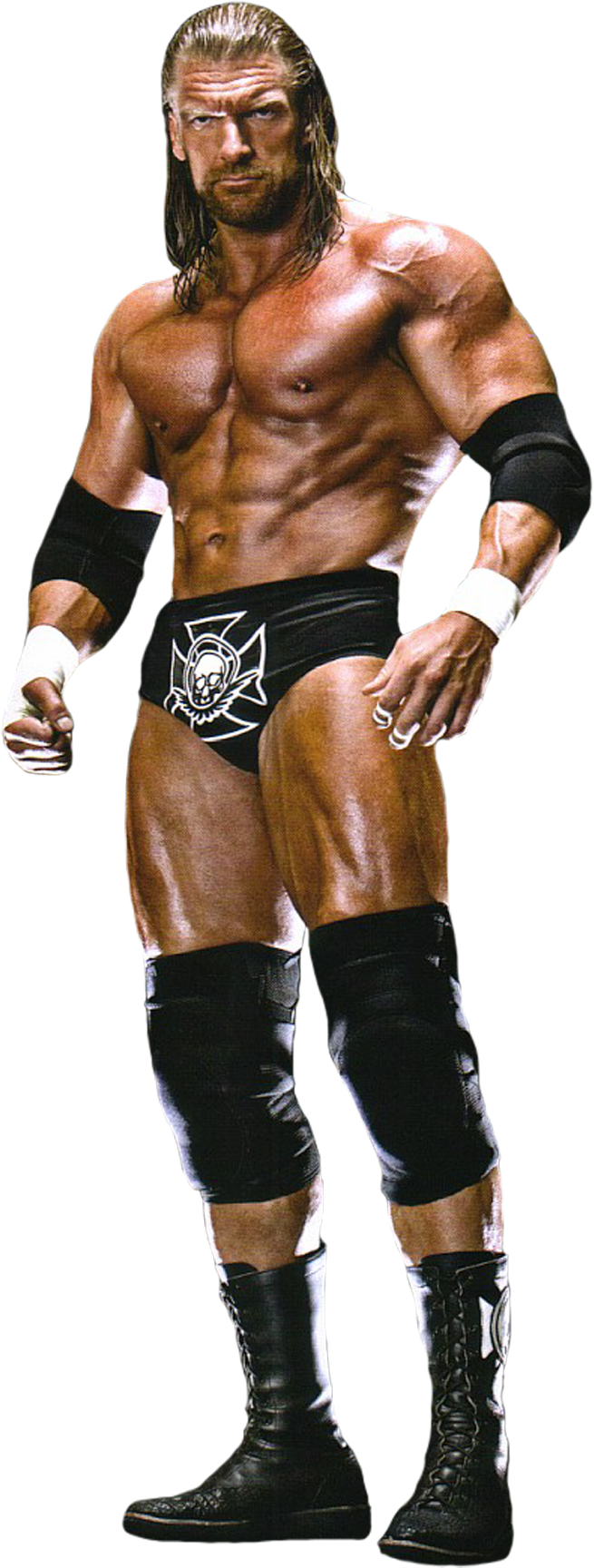 17 111126194456 Png Png Image 655 1728 Pixels Scaled 53 Wwe Tag Teams Triple H Wwe Champions