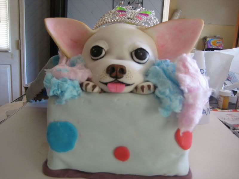 Admirable May 15 Is My Doggies Birthday Birthday Cake Chihuahua Funny Birthday Cards Online Unhofree Goldxyz