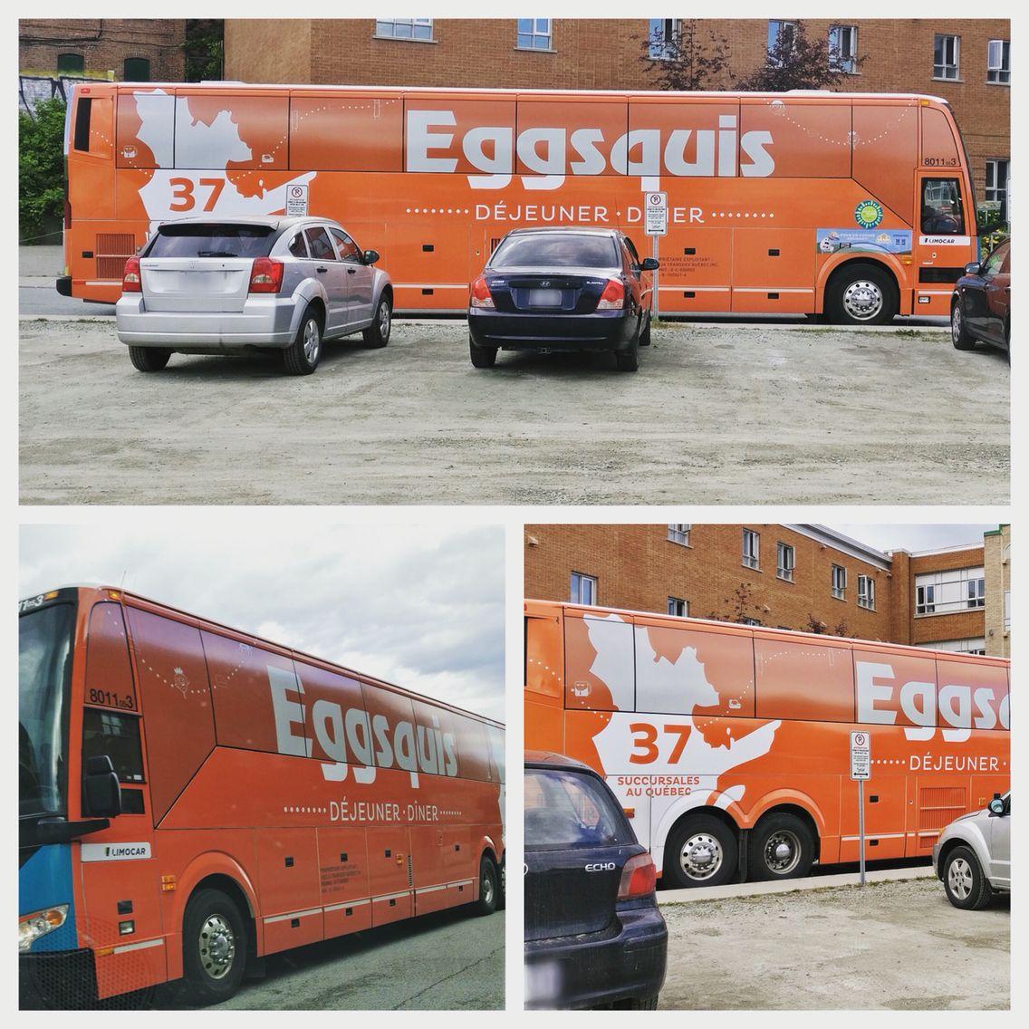 Eggsquis Bus