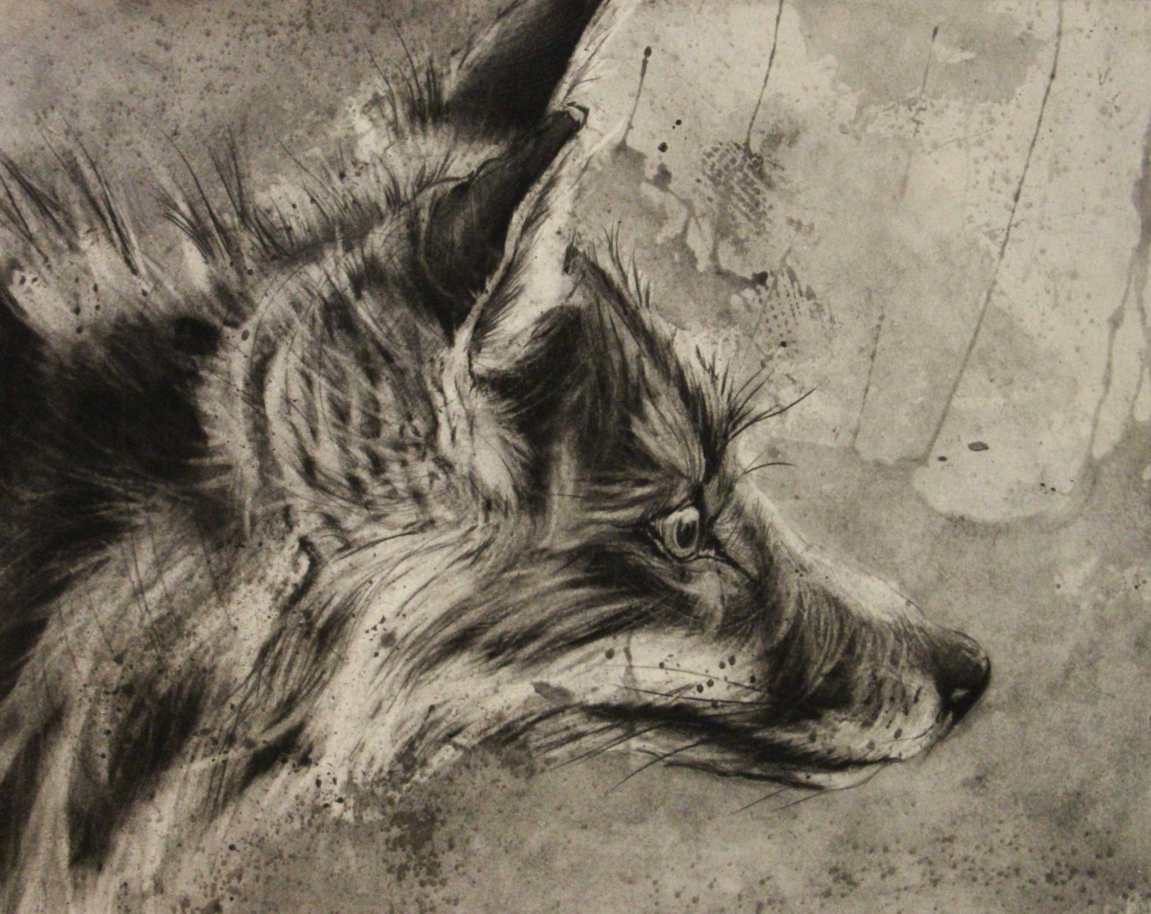 fox drawing drawing markmaking drawings fox drawing