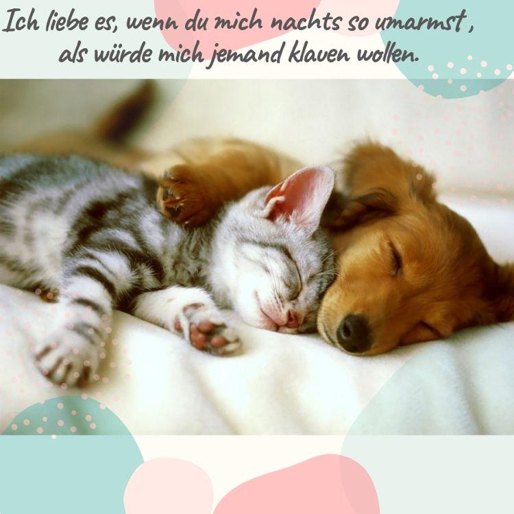 24 Traumhaft Schone Gute Nacht Bilder Und Spruche Fur Whatsapp