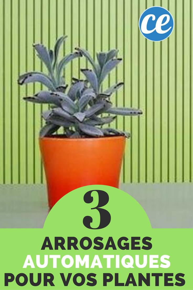 Arrosage Automatique D Intérieur 3 arrosages automatiques faits maison pour vos plantes d